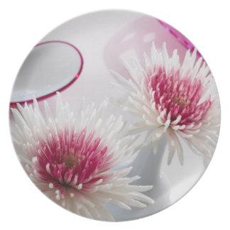 Chrysanthemums Plates