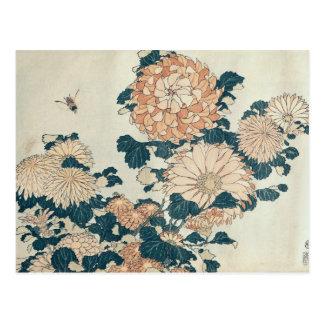 Chrysanthemums Postcard