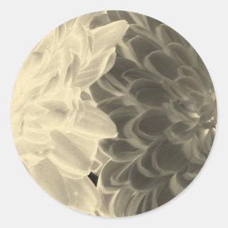 chrysanthemums round sticker