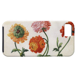 Chrysanthemums (w/c on paper) tough iPhone 5 case