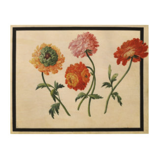 Chrysanthemums (w/c on paper) wood wall decor