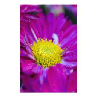 chrysanthemun in the garden customized stationery