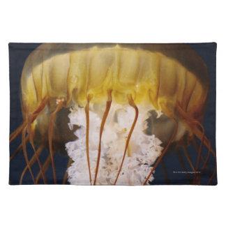 Chrysaora fuscescens,  Pacific Sea nettle Placemat