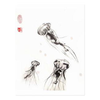 Chrysaora Jellyfish Postcard