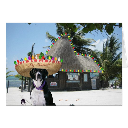 Chrysie Mexican Christmas Card