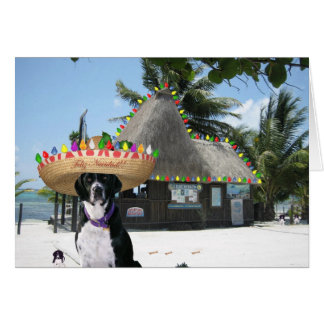 Chrysie's Mexican Christmas Greeting Card