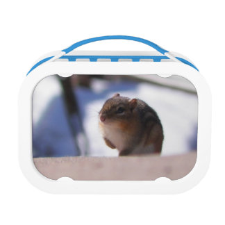 Chubbers the Chipmunk Lunch Box
