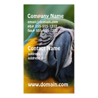 Chubby Cheeked Blue and Gold Macaw Double-Sided Standard Business Cards (Pack Of 100)