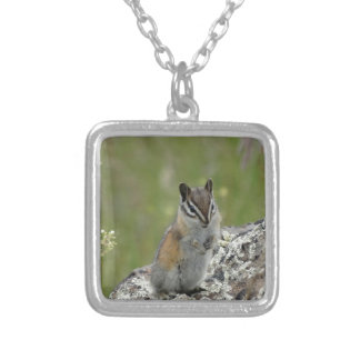 chubby cute chipmunk on rock necklace