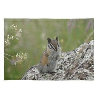 chubby cute chipmunk on rock cloth place mat