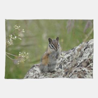 chubby cute chipmunk on rock hand towel