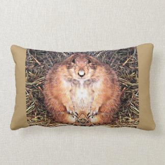 Chubby Gopher Custom Throw Pillow