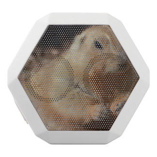 Chubby Prairie Dog White Boombot Rex Bluetooth Speaker