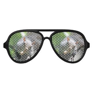 Chubby Squirrel Aviator Sunglasses