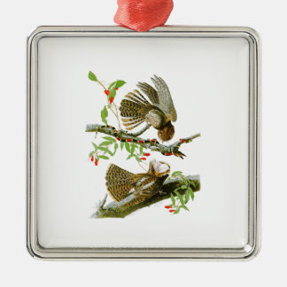 Chuck-will's Widow John Audubon Birds of America Christmas Ornament