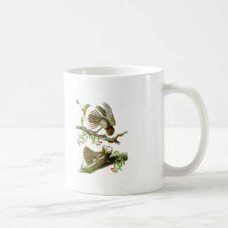 Chuck-will's Widow John Audubon Birds of America Coffee Mug