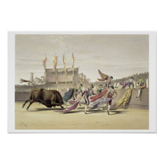 Chulos Playing the Bull, 1865 (colour litho) Poster
