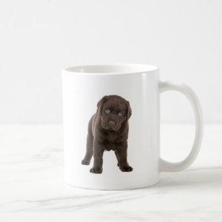 Chunky Chocolate Labrador Puppy Mug