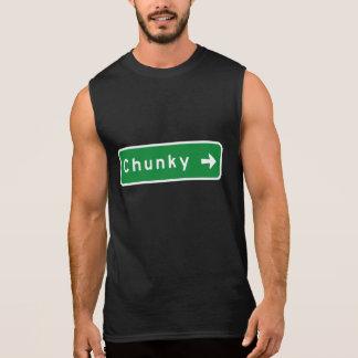 Chunky, Road Marker, Mississippi, USA Sleeveless Tee