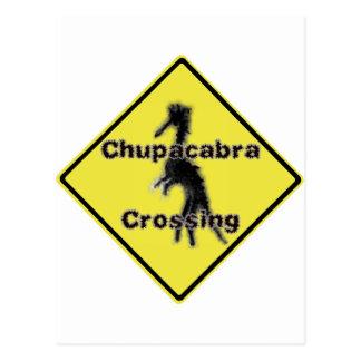 Chupacabra Crossing Postcard