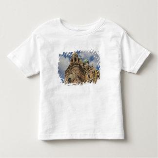 Church of the Saviour of Spilled Blood 4 Toddler T-Shirt