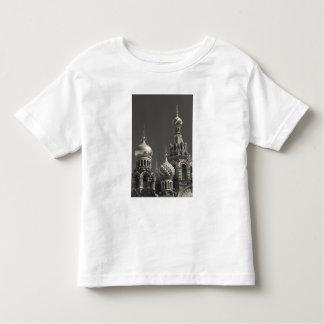 Church of the Saviour of Spilled Blood 5 Toddler T-Shirt