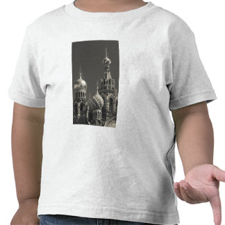 Church of the Saviour of Spilled Blood 5 Tees