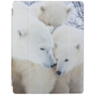 Churchill Wildlife Management Area iPad Cover
