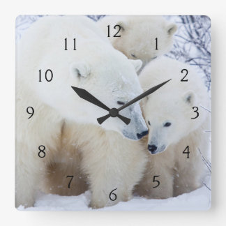 Churchill Wildlife Management Area Square Wall Clock