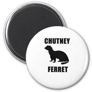 Chutney Ferret Magnet