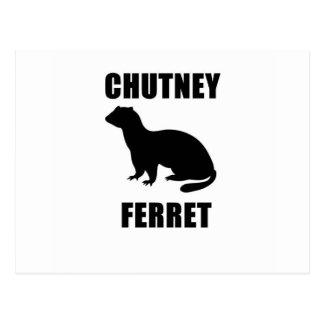 Chutney Ferret Postcard