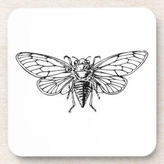 Cicada Drink Coaster