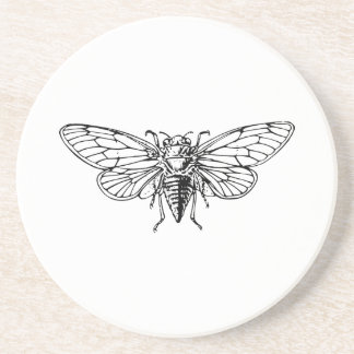 Cicada Drink Coasters