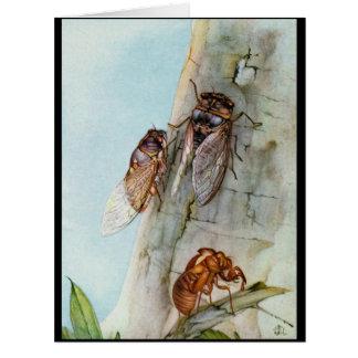 Cicada Life Cycle 1921 Big Greeting Card
