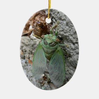 Cicada on the Wall Christmas Ornament