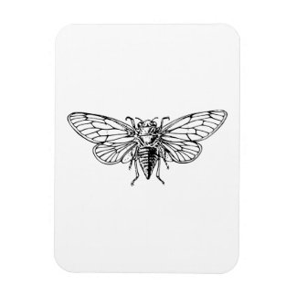 Cicada Rectangle Magnet