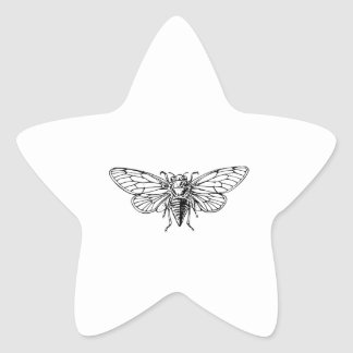 Cicada Star Sticker