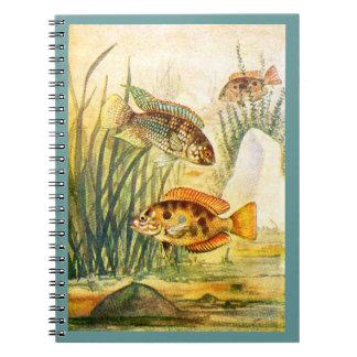 Cichlid Fish Spiral Notebook