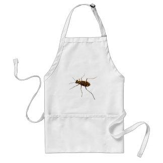 Cicindela beetle standard apron