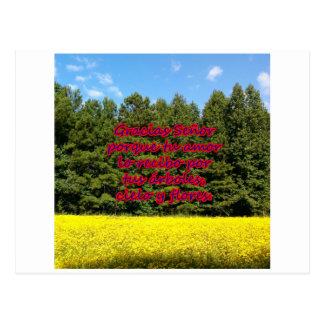 Cielo árboles y flores 18.02.06 postcard
