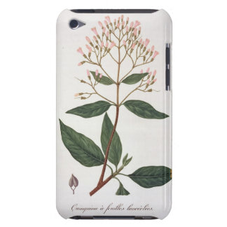 Cinchona from 'Phytographie Medicale' by Joseph Ro Barely There iPod Cover