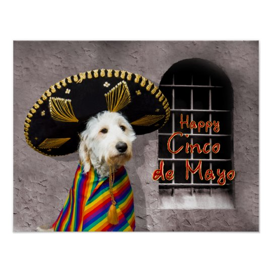 Cinco de Mayo Poster - Dog in Sombrero