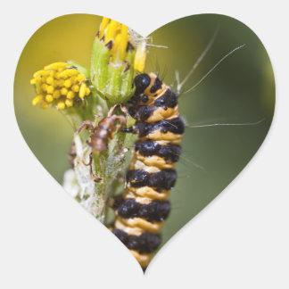 Cinnabar moth Orange Stripey Caterpillar Heart Stickers