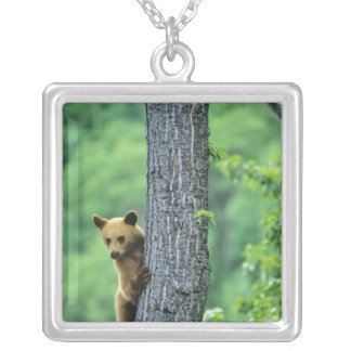 Cinnamon colored black bear in tree in silver plated necklace