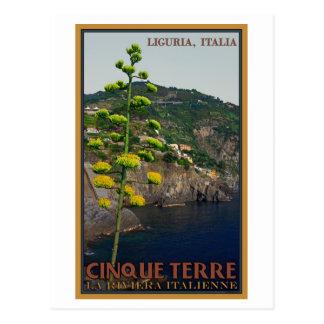 Cinque Terre - Century Plant Postcard