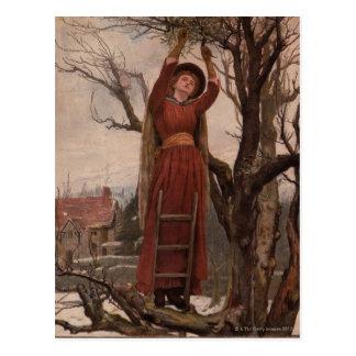 Circa 1820: A young woman cuts mistletoe Postcard