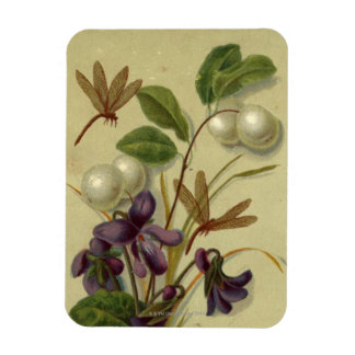 Circa 1881: Snowberries and violets Magnet