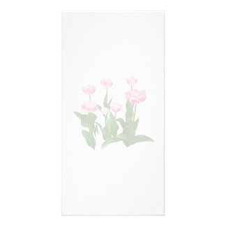 Circle of Pink Tulips Picture Card