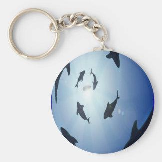 Circle-of-sharks Key Ring