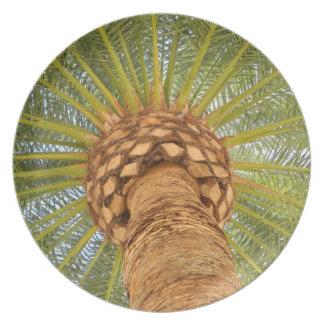 Circle Palm Plates